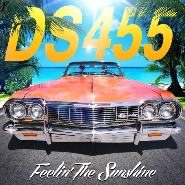 DS455_feelinthesunshine2400